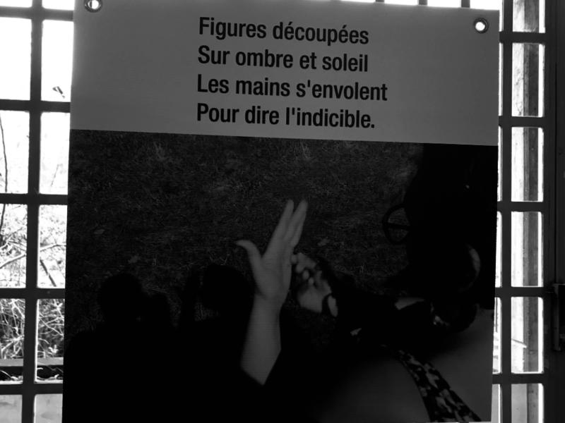 Handicap : une exposition qui pose un regard différent sur la langue des signes