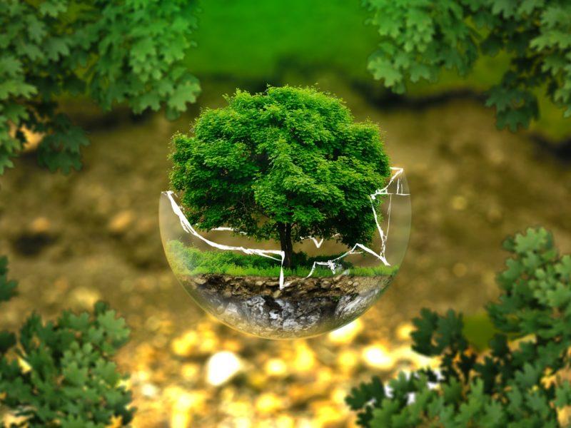 Fiscalité écologique : un groupe de travail pour imaginer de nouveaux leviers d'incitation