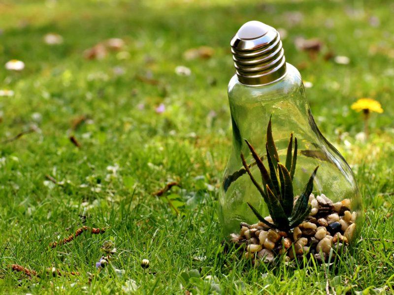 Transition énergétique : j'alerte le Gouvernement sur les émissions de CO2 liées à la production d'électricité