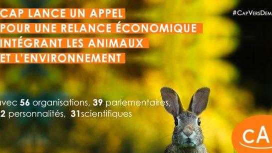 «Pour une relance économique intégrant la protection des animaux et de l'environnement !»