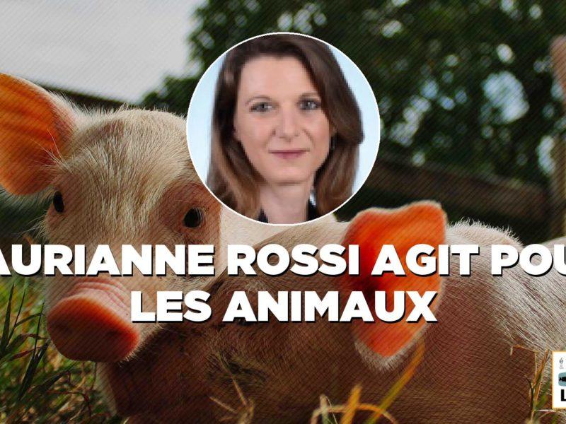 Lutte contre la maltraitance animale : notre loi est adoptée !